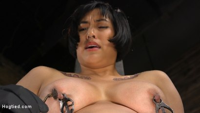 Photo number 12 from Mia is Bound in Grueling Rope Bondage and Brutally Tormented shot for Hogtied on Kink.com. Featuring Mia Little in hardcore BDSM & Fetish porn.