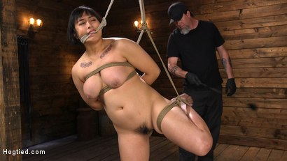 Photo number 5 from Mia is Bound in Grueling Rope Bondage and Brutally Tormented shot for Hogtied on Kink.com. Featuring Mia Little in hardcore BDSM & Fetish porn.