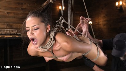 Photo number 11 from Petite Slut Avi Love is Bound, Tormented, and Made to Cum shot for Hogtied on Kink.com. Featuring Avi Love in hardcore BDSM & Fetish porn.
