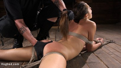 Photo number 13 from Petite Slut Avi Love is Bound, Tormented, and Made to Cum shot for Hogtied on Kink.com. Featuring Avi Love in hardcore BDSM & Fetish porn.