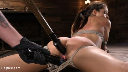 Photo number 14 from Petite Slut Avi Love is Bound, Tormented, and Made to Cum shot for Hogtied on Kink.com. Featuring Avi Love in hardcore BDSM & Fetish porn.