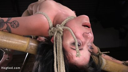Photo number 6 from Submissive Goth Girl is Bound, Tormented, and Made to Cum shot for Hogtied on Kink.com. Featuring Charlotte Sartre in hardcore BDSM & Fetish porn.