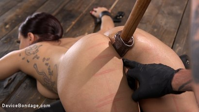Photo number 14 from Gabriella Paltrova Anal Orgasm in Diabolical Predicament Bondage shot for Device Bondage on Kink.com. Featuring Gabriella Paltrova in hardcore BDSM & Fetish porn.