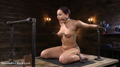 Photo number 6 from Gabriella Paltrova Anal Orgasm in Diabolical Predicament Bondage shot for Device Bondage on Kink.com. Featuring Gabriella Paltrova in hardcore BDSM & Fetish porn.