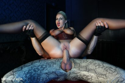Photo number 8 from Bitch Boudoir - Blonde MILF Fucks her Gimp	 shot for Harmony Fetish on Kink.com. Featuring Georgie Lyall and Clark Kent in hardcore BDSM & Fetish porn.
