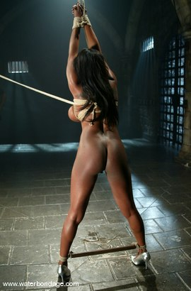 Photo number 6 from Sick, Sick Jada Fire shot for Water Bondage on Kink.com. Featuring Jada Fire in hardcore BDSM & Fetish porn.