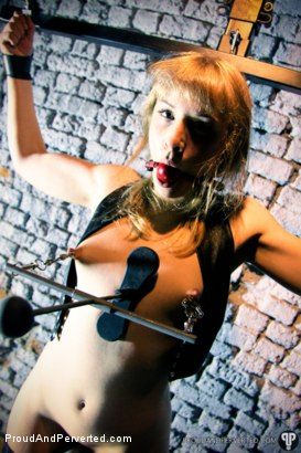 Photo number 15 from The Day I Met Marion shot for Proud and Perverted on Kink.com. Featuring Marion and Sebastian Solo in hardcore BDSM & Fetish porn.