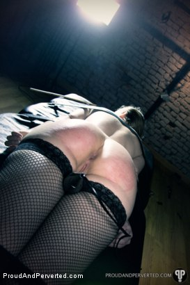 Photo number 20 from The Day I Met Marion shot for Proud and Perverted on Kink.com. Featuring Marion and Sebastian Solo in hardcore BDSM & Fetish porn.