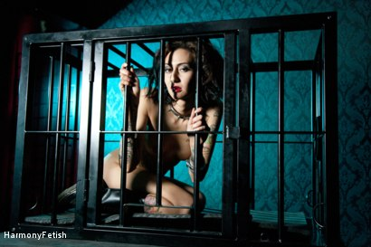 Photo number 15 from Caged Whore Gets Fucked as Dominatrix watches. Total Foursome Chaos shot for Harmony Fetish on Kink.com. Featuring Havana Sins, Lexi Ward, Jamie Barry and Kai Taylor in hardcore BDSM & Fetish porn.