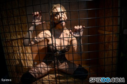 Cherie Deville Captivity Pet