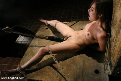 Photo number 11 from Sasha Grey Chased and Captured shot for Hogtied on Kink.com. Featuring Sasha Grey in hardcore BDSM & Fetish porn.
