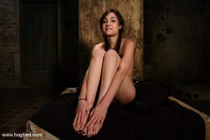 Photo number 15 from Sasha Grey Chased and Captured shot for Hogtied on Kink.com. Featuring Sasha Grey in hardcore BDSM & Fetish porn.