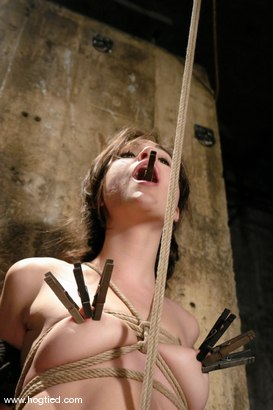 Photo number 5 from Sasha Grey Chased and Captured shot for Hogtied on Kink.com. Featuring Sasha Grey in hardcore BDSM & Fetish porn.
