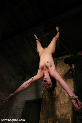 Photo number 14 from Sasha Grey Chased and Captured shot for Hogtied on Kink.com. Featuring Sasha Grey in hardcore BDSM & Fetish porn.