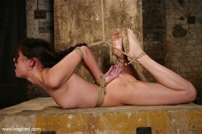 Photo number 9 from Sasha Grey Chased and Captured shot for Hogtied on Kink.com. Featuring Sasha Grey in hardcore BDSM & Fetish porn.