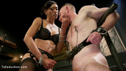 Photo number 4 from Obedient Boy: Venus Lux Torments & Fucks Her Delivery Boy shot for TS Seduction on Kink.com. Featuring Venus Lux and Damien Moreau in hardcore BDSM & Fetish porn.
