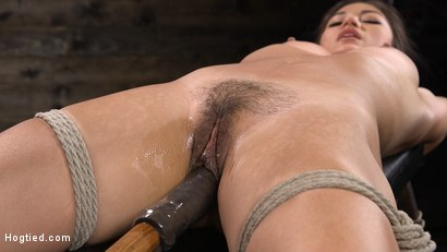 Photo number 5 from Sweet and Innocent Kendra Spade Gets Bound, Tormented, and Made to Cum shot for Hogtied on Kink.com. Featuring Kendra Spade in hardcore BDSM & Fetish porn.