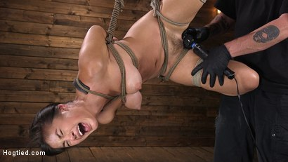 Photo number 8 from Sweet and Innocent Kendra Spade Gets Bound, Tormented, and Made to Cum shot for Hogtied on Kink.com. Featuring Kendra Spade in hardcore BDSM & Fetish porn.
