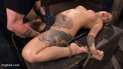 Photo number 13 from Tattooed Slut Is Tormented In Bondage And Made To Cum shot for Hogtied on Kink.com. Featuring Kleio Valentien in hardcore BDSM & Fetish porn.