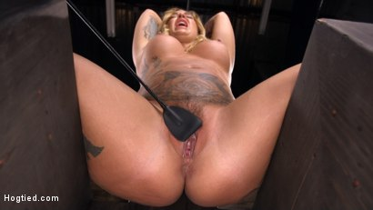 Photo number 5 from Tattooed Slut Is Tormented In Bondage And Made To Cum shot for Hogtied on Kink.com. Featuring Kleio Valentien in hardcore BDSM & Fetish porn.