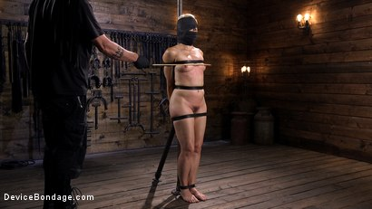 Photo number 5 from Sexy Blonde Cougar is Destroyed in Device Bondage shot for Device Bondage on Kink.com. Featuring Helena Locke in hardcore BDSM & Fetish porn.