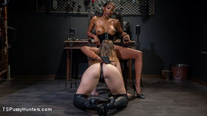 Photo number 6 from Natassia Dreams' Slutty Leather Sex Kitten, Ella Nova shot for TS Pussy Hunters on Kink.com. Featuring Natassia Dreams and Ella Nova in hardcore BDSM & Fetish porn.