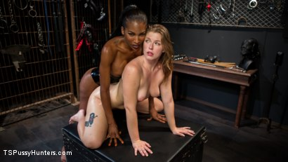Photo number 10 from Natassia Dreams' Slutty Leather Sex Kitten, Ella Nova shot for TS Pussy Hunters on Kink.com. Featuring Natassia Dreams and Ella Nova in hardcore BDSM & Fetish porn.