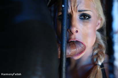 Photo number 1 from Caged Slaves in an Anal Threesome shot for Harmony Fetish on Kink.com. Featuring Victoria Summers, Valerie Fox and Mike Angelo in hardcore BDSM & Fetish porn.