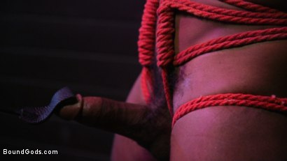 Photo number 21 from  Buck Wright Bound and Beaten   shot for Bound Gods on Kink.com. Featuring Sebastian Keys and Buck Wright in hardcore BDSM & Fetish porn.