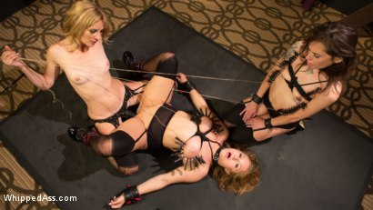 Photo number 17 from Mona's Pair of Perfectly Perverted Pets shot for Whipped Ass on Kink.com. Featuring Mona Wales, Kacie Castle and Skylar Snow in hardcore BDSM & Fetish porn.