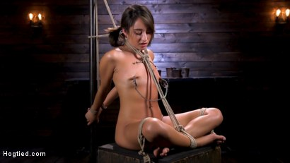 Photo number 3 from Young and Petite Slut in Grueling Bondage and Tormented shot for Hogtied on Kink.com. Featuring Isabella Nice in hardcore BDSM & Fetish porn.