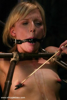 Photo number 6 from Alexa Lynn and Kayla Paige shot for Whipped Ass on Kink.com. Featuring Alexa Lynn and Kayla Paige in hardcore BDSM & Fetish porn.