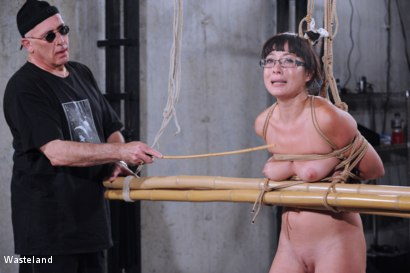 Photo number 1 from Bamboo Prison shot for Wasteland on Kink.com. Featuring David Lawrence and Nyssa Nevers in hardcore BDSM & Fetish porn.