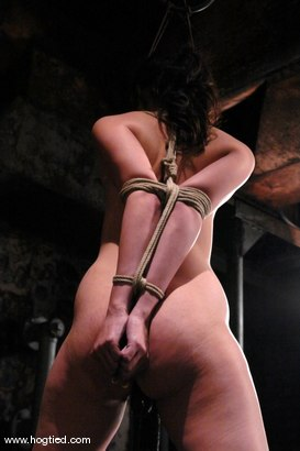 Photo number 7 from LieLani shot for Hogtied on Kink.com. Featuring LieLani in hardcore BDSM & Fetish porn.