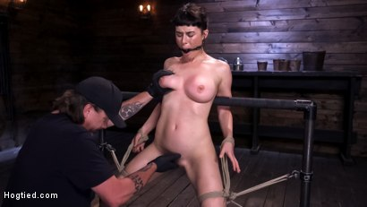 Photo number 1 from Hot Bodied, All Natural Rope Slut Submits to Torment and Orgasms shot for Hogtied on Kink.com. Featuring Olive Glass in hardcore BDSM & Fetish porn.