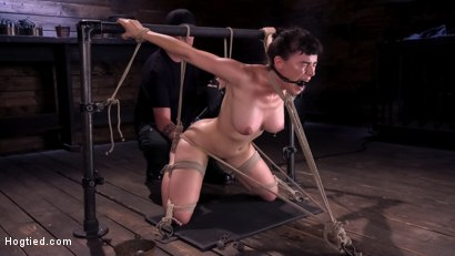 Photo number 14 from Hot Bodied, All Natural Rope Slut Submits to Torment and Orgasms shot for Hogtied on Kink.com. Featuring Olive Glass in hardcore BDSM & Fetish porn.