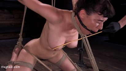 Photo number 10 from Hot Bodied, All Natural Rope Slut Submits to Torment and Orgasms shot for Hogtied on Kink.com. Featuring Olive Glass in hardcore BDSM & Fetish porn.