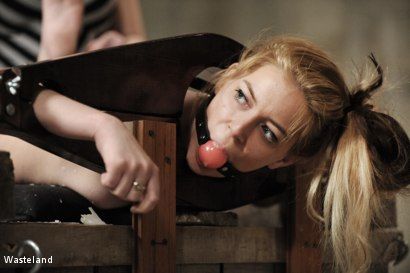 Photo number 5 from Backside Pleasure shot for Wasteland on Kink.com. Featuring Lilly Ligotage and Sophie in hardcore BDSM & Fetish porn.
