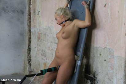 Photo number 11 from Daisy Lee Dildo-Fucked after a Pickup shot for Machine Dom on Kink.com. Featuring Ar and Daisy Lee in hardcore BDSM & Fetish porn.