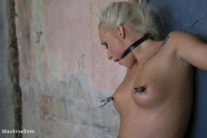 Photo number 15 from Daisy Lee Dildo-Fucked after a Pickup shot for Machine Dom on Kink.com. Featuring Ar and Daisy Lee in hardcore BDSM & Fetish porn.