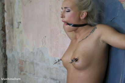 Photo number 16 from Daisy Lee Dildo-Fucked after a Pickup shot for Machine Dom on Kink.com. Featuring Ar and Daisy Lee in hardcore BDSM & Fetish porn.