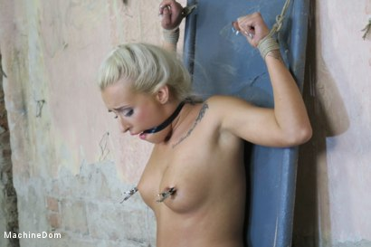 Photo number 17 from Daisy Lee Dildo-Fucked after a Pickup shot for Machine Dom on Kink.com. Featuring Ar and Daisy Lee in hardcore BDSM & Fetish porn.