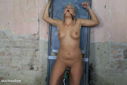 Photo number 9 from Daisy Lee Dildo-Fucked after a Pickup shot for Machine Dom on Kink.com. Featuring Ar and Daisy Lee in hardcore BDSM & Fetish porn.