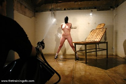 Photo number 9 from The Training of Lorelei Lee, Day One shot for The Training Of O on Kink.com. Featuring Lorelei Lee in hardcore BDSM & Fetish porn.