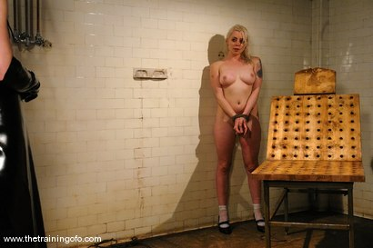 Photo number 15 from The Training of Lorelei Lee, Day One shot for The Training Of O on Kink.com. Featuring Lorelei Lee in hardcore BDSM & Fetish porn.