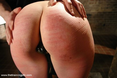 Photo number 5 from The Training of Lorelei Lee, Day One shot for The Training Of O on Kink.com. Featuring Lorelei Lee in hardcore BDSM & Fetish porn.