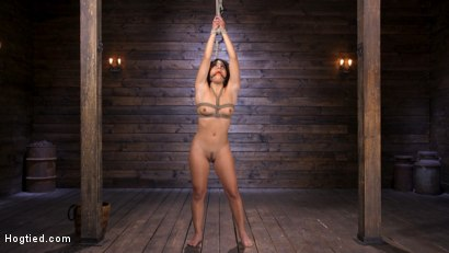 Photo number 1 from Sexy Latina Liv Revamped Captured and Tormented in Grueling Bondage shot for Hogtied on Kink.com. Featuring Liv Revamped in hardcore BDSM & Fetish porn.