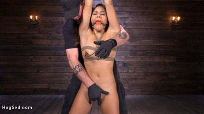 Photo number 3 from Sexy Latina Liv Revamped Captured and Tormented in Grueling Bondage shot for Hogtied on Kink.com. Featuring Liv Revamped in hardcore BDSM & Fetish porn.
