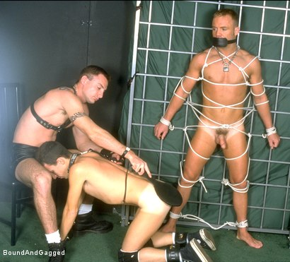 Photo number 3 from Masters & Slaves 2: When the Cat's Away shot for Bound And Gagged on Kink.com. Featuring Jason Branch, Steve Ross, Jay Ross, Aaron Tanner and Tony Ferrari in hardcore BDSM & Fetish porn.