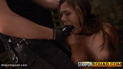 Photo number 9 from Brooklyn Daniels & Ava Kelly Give Smart Mouth Sex Slave Mena Li More Training shot for Strapon Squad on Kink.com. Featuring Mena Mason, Brooklyn Daniels and Ava Kelly in hardcore BDSM & Fetish porn.